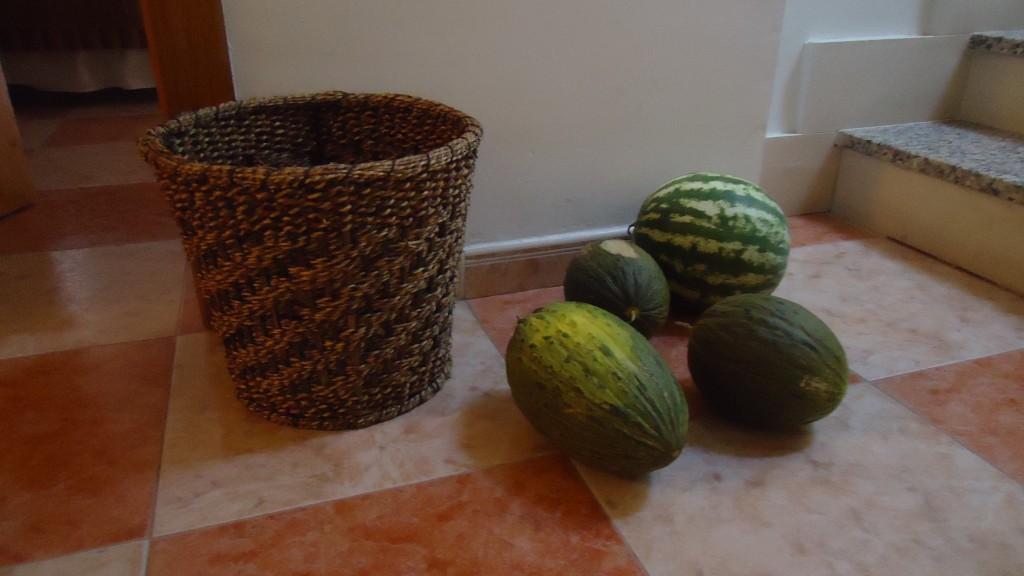 portillo-melones-de-la-huerta