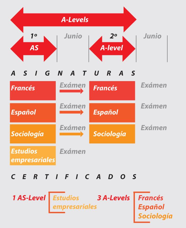 grafico A-levels. Elección de asignaturas de DC